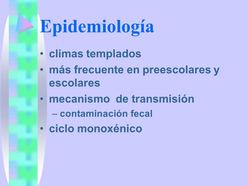 Ciclo biológico ciclo directo –huevo de Hymenolepis nana, ingestión, intestino delgado –liberación del embrión, penetración a la vellosidad intestinal –fijación del escólex a la pared intestinal –crecimiento de cadena estrobilar adulto maduro –liberación de proglótidas grávidas –desintegración de proglótidas –huevos libres en la luz intestinal –salida de huevos en las heces