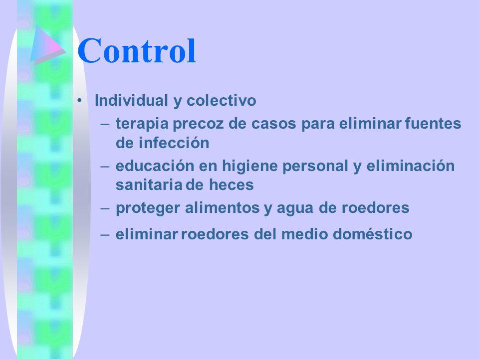 Cestodes intestinales Parasitología Junio 2001 Dra. Marisa Torres H
