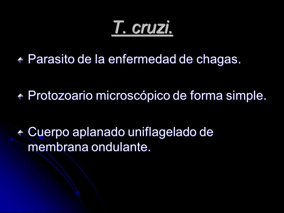 T.cruzi. Parasito de la enfermedad de chagas. Protozoario microscópico de forma simple.