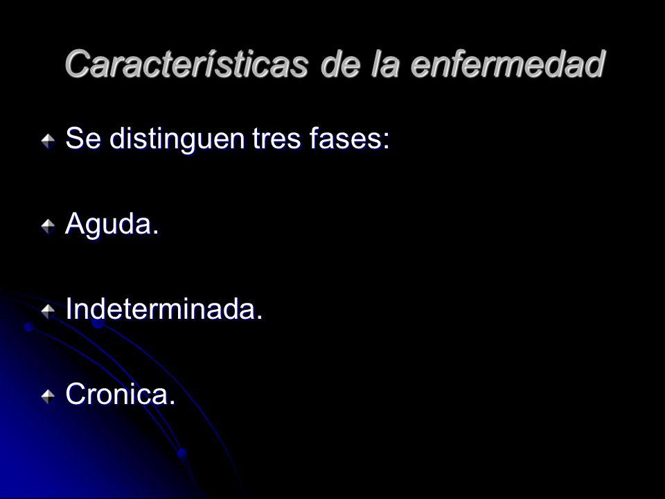 Características de la enfermedad Se distinguen tres fases: Aguda.Indeterminada.Cronica.