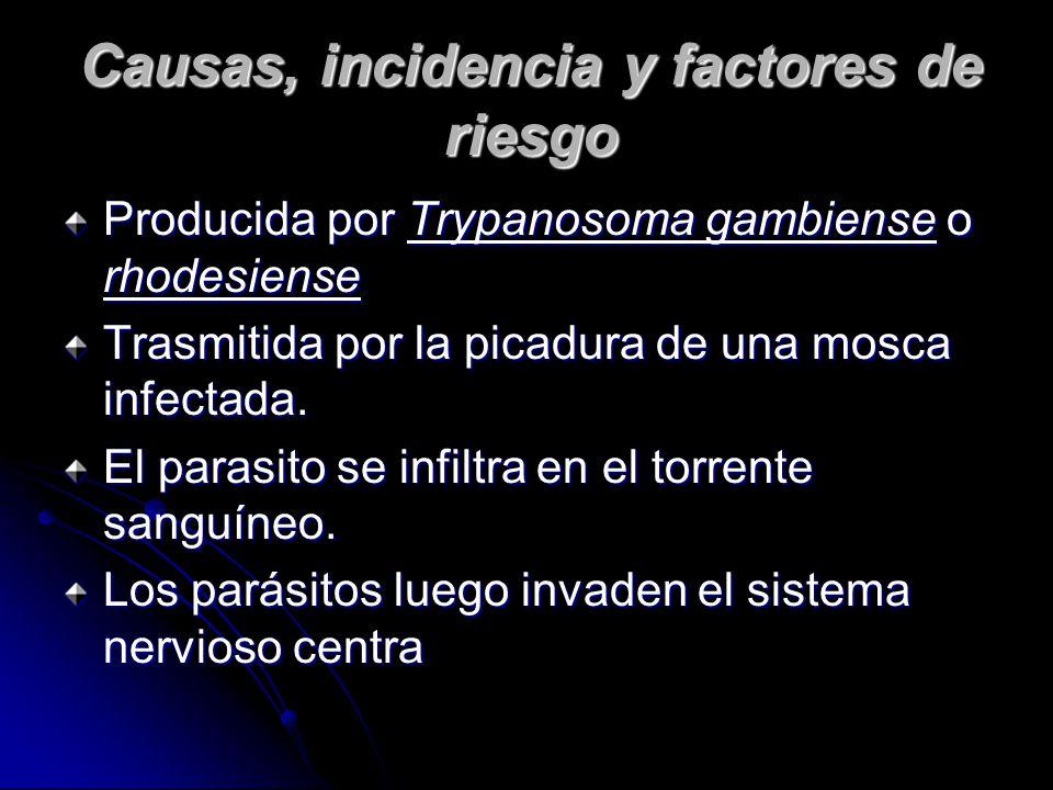 Causas, incidencia y factores de riesgo Producida por Trypanosoma gambiense o rhodesiense Trasmitida por la picadura de una mosca infectada.