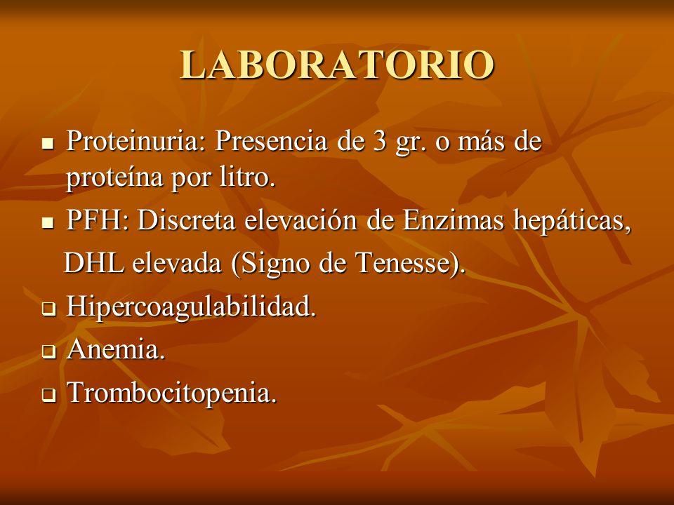 LABORATORIO Proteinuria: Presencia de 3 gr. o más de proteína por litro. Proteinuria: Presencia de 3 gr. o más de proteína por litro. PFH: Discreta el