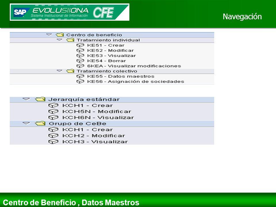 Navegación Centro de Beneficio, Datos Maestros