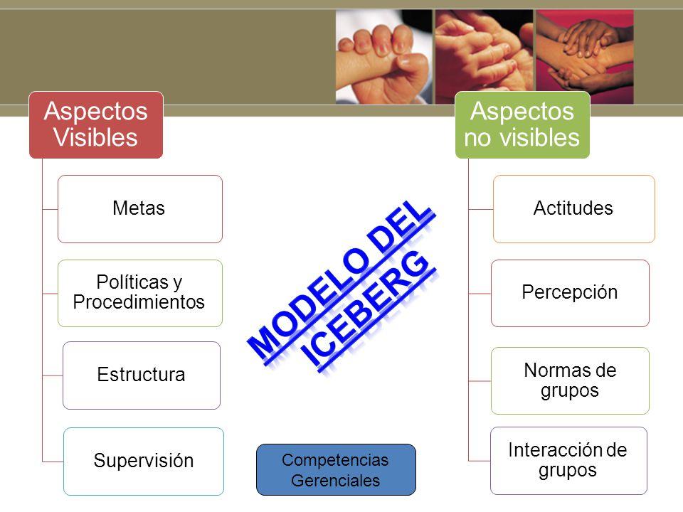 Aspectos Visibles Metas Políticas y Procedimientos EstructuraSupervisión Aspectos no visibles ActitudesPercepción Normas de grupos Interacción de grup