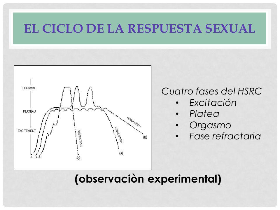AXIOMAS DE LA TERAPIA DE MASTERS & JOHNSON Marco de referencia: Ciclo de la respuesta sexual humana La sexualidad satisfactoria y la sexualidad que funciona.
