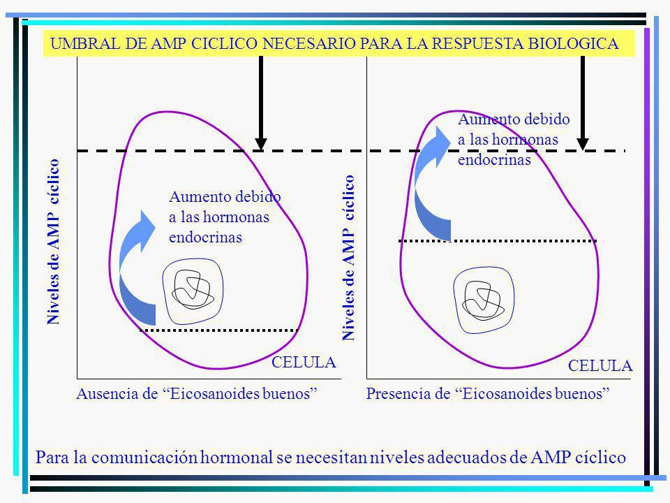 Para la comunicación hormonal se necesitan niveles adecuados de AMP cíclico Ausencia de Eicosanoides buenosPresencia de Eicosanoides buenos Niveles de