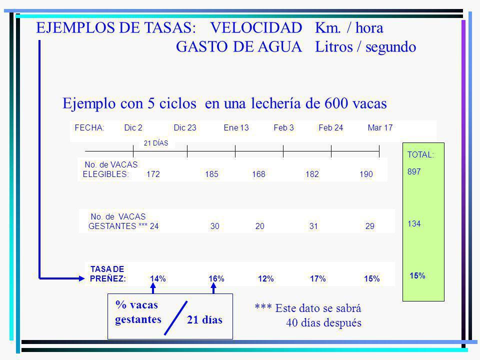 No.VACAS ELEGIBLES: 600 528 449 373 317 No.