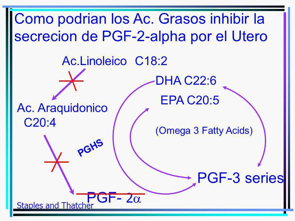 Ac. Araquidonico C20:4 PGF- 2 Como podrian los Ac. Grasos inhibir la secrecion de PGF-2-alpha por el Utero PGHS EPA C20:5 PGF-3 series Staples and Tha