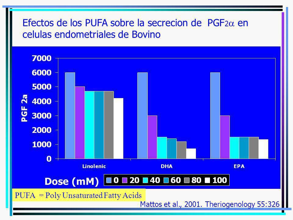Efectos de los PUFA sobre la secrecion de PGF 2 en celulas endometriales de Bovino Dose (mM) Mattos et al., 2001. Theriogenology 55:326 PUFA = Poly Un