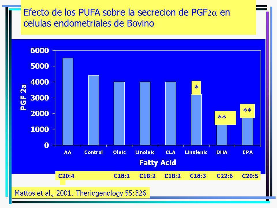 Efecto de los PUFA sobre la secrecion de PGF 2 en celulas endometriales de Bovino * ** Mattos et al., 2001. Theriogenology 55:326 C20:4 C18:1 C18:2 C1