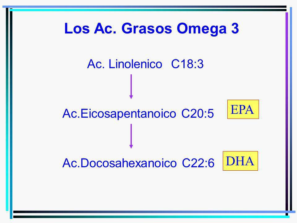 Ac. Linolenico C18:3 Ac.Eicosapentanoico C20:5 Ac.Docosahexanoico C22:6 Los Ac. Grasos Omega 3 EPA DHA