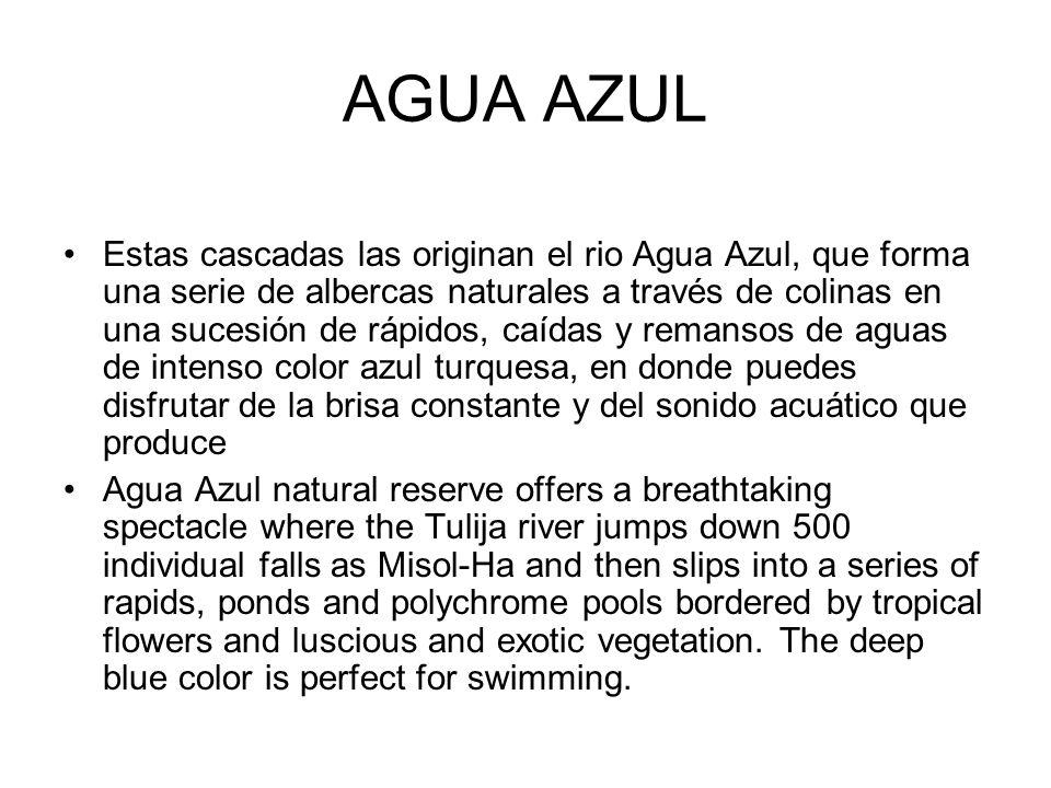 AGUA AZUL Estas cascadas las originan el rio Agua Azul, que forma una serie de albercas naturales a través de colinas en una sucesión de rápidos, caíd