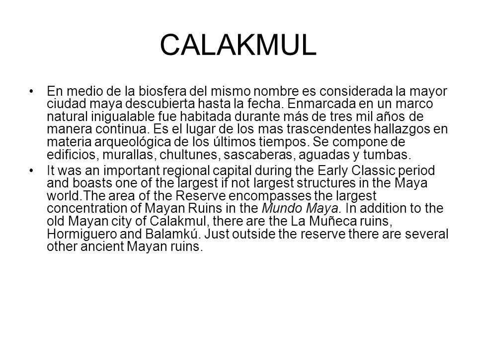 CALAKMUL En medio de la biosfera del mismo nombre es considerada la mayor ciudad maya descubierta hasta la fecha. Enmarcada en un marco natural inigua