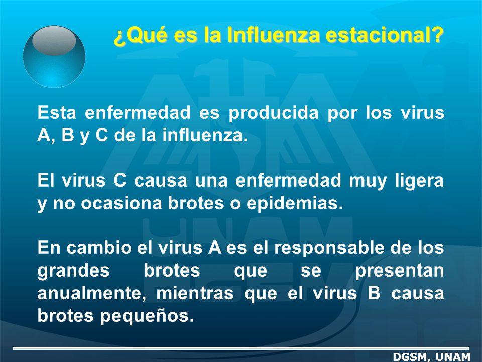¿Qué es la Influenza estacional? Esta enfermedad es producida por los virus A, B y C de la influenza. El virus C causa una enfermedad muy ligera y no