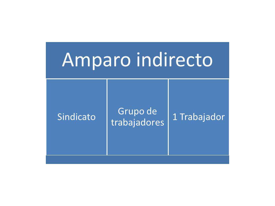 Amparo indirecto Sindicato Grupo de trabajadores 1 Trabajador