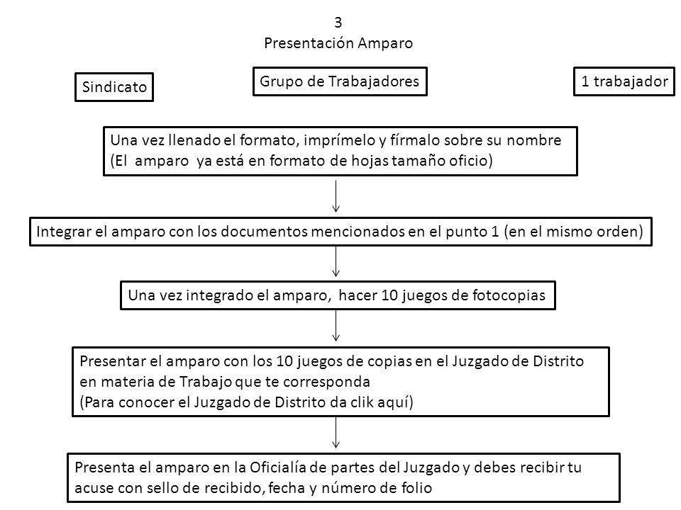 3 Presentación Amparo Sindicato Grupo de Trabajadores1 trabajador Una vez llenado el formato, imprímelo y fírmalo sobre su nombre (El amparo ya está e