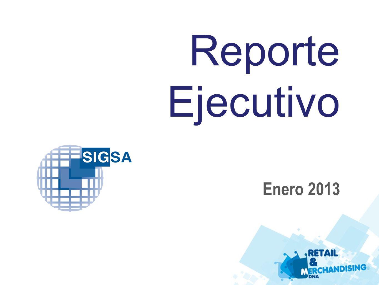 Reporte Ejecutivo Enero 2013