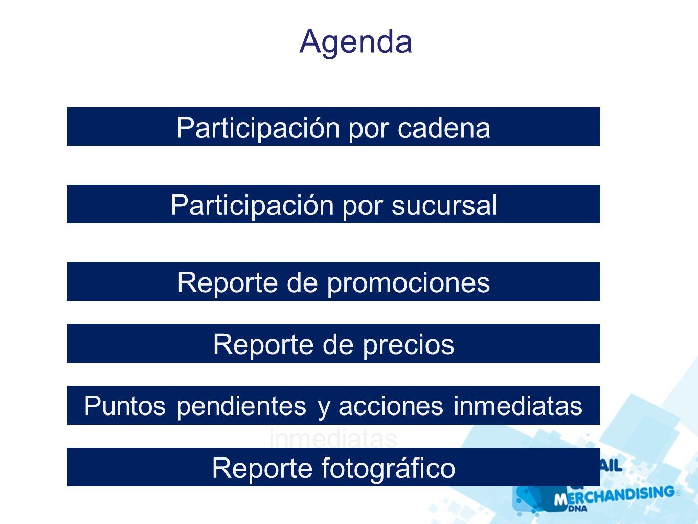 Participación por cadena Agenda Participación por sucursal Reporte de promociones Puntos pendientes y acciones inmediatas inmediatas Reporte de precio