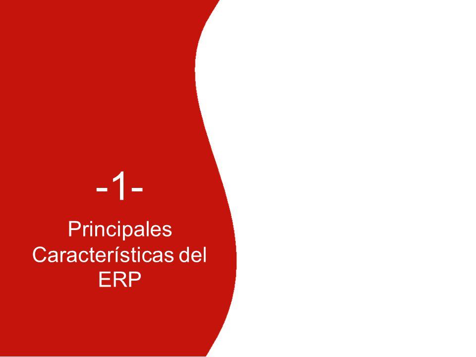 Principales Características del ERP -1-