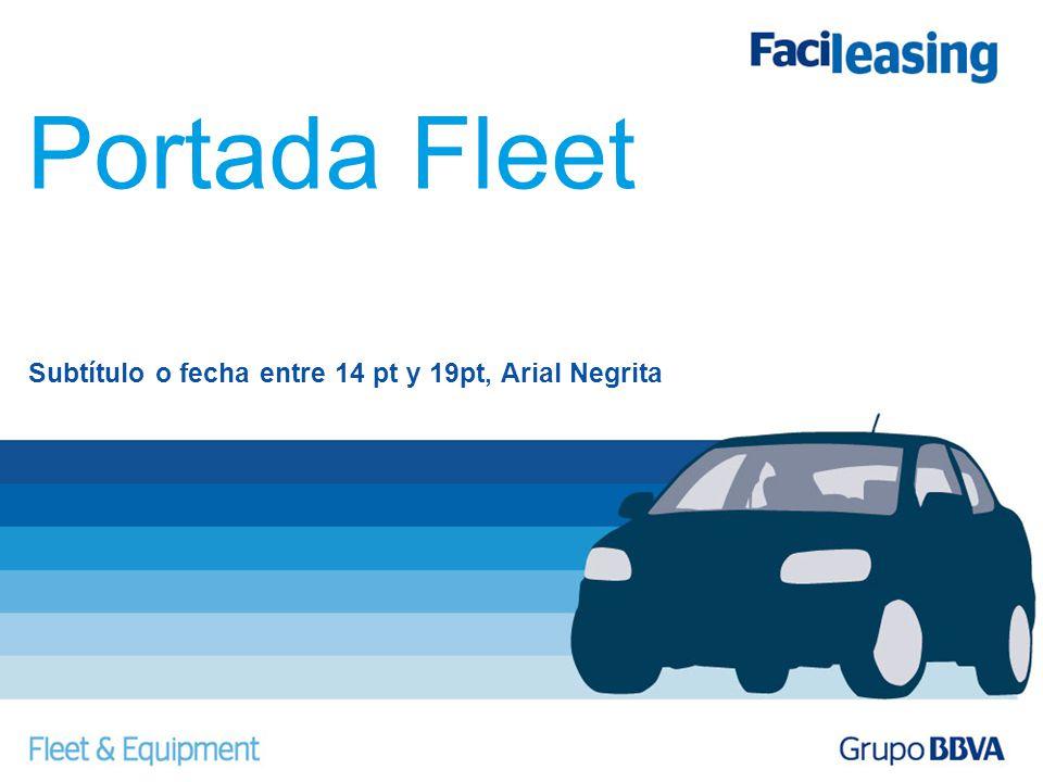 Subtítulo o fecha entre 14 pt y 19pt, Arial Negrita Portada Fleet