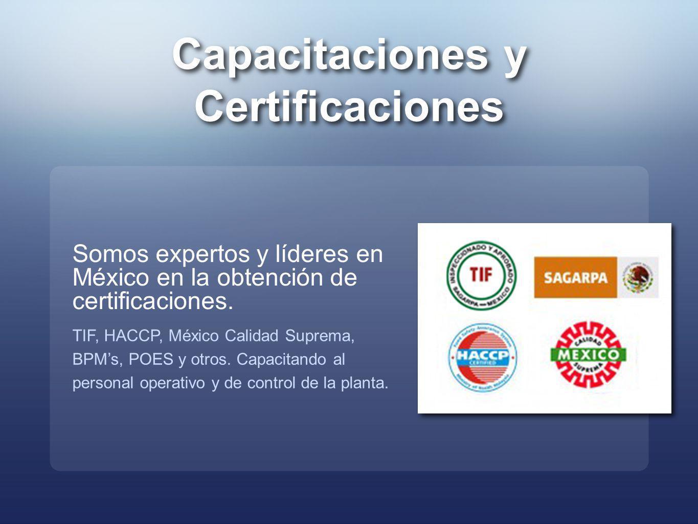 Capacitaciones y Certificaciones Somos expertos y líderes en México en la obtención de certificaciones. TIF, HACCP, México Calidad Suprema, BPMs, POES