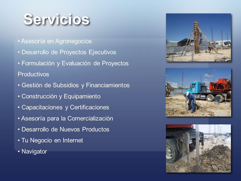 Servicios Asesoría en Agronegocios Desarrollo de Proyectos Ejecutivos Formulación y Evaluación de Proyectos Productivos Gestión de Subsidios y Financi