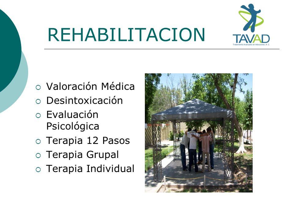 REHABILITACION Valoración Médica Desintoxicación Evaluación Psicológica Terapia 12 Pasos Terapia Grupal Terapia Individual