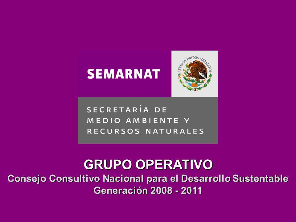Estructura del Núcleo Estatal Funciones del Núcleo Estatal Elección dentro de los Núcleos Lineamientos diversos GRUPO OPERATIVO Consejo Consultivo Nacional para el Desarrollo Sustentable Generación 2008 - 2011
