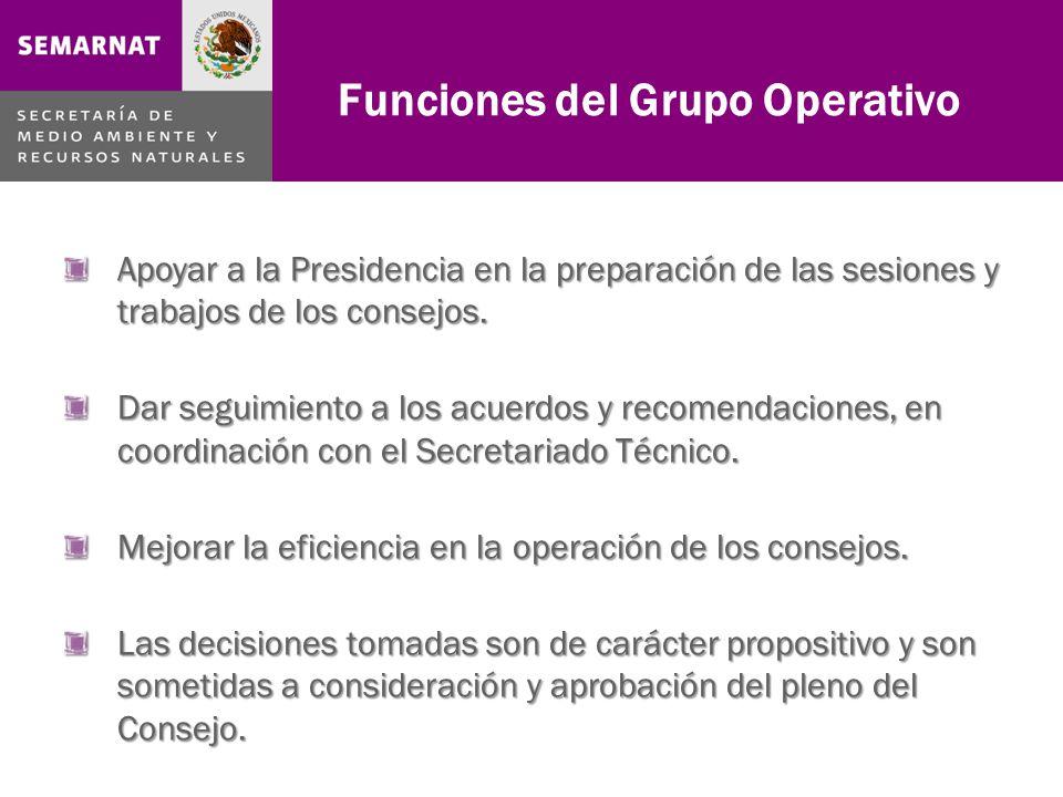 Apoyar a la Presidencia en la preparación de las sesiones y trabajos de los consejos.