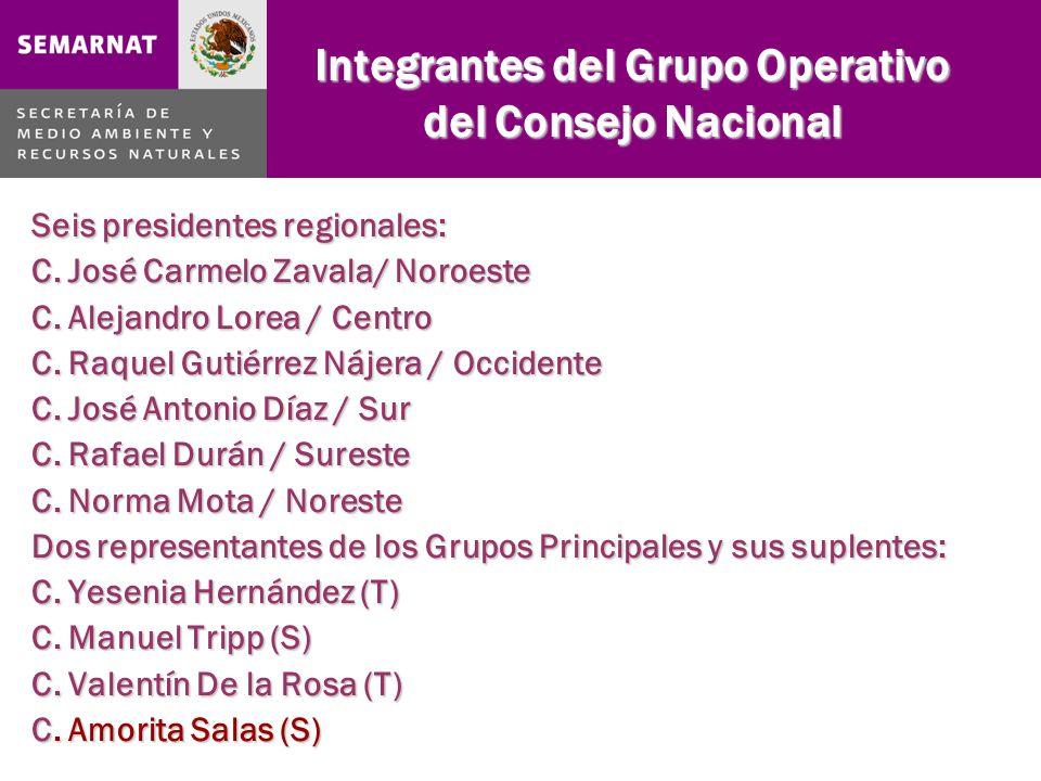 Integrantes del Grupo Operativo del Consejo Nacional Seis presidentes regionales: C.