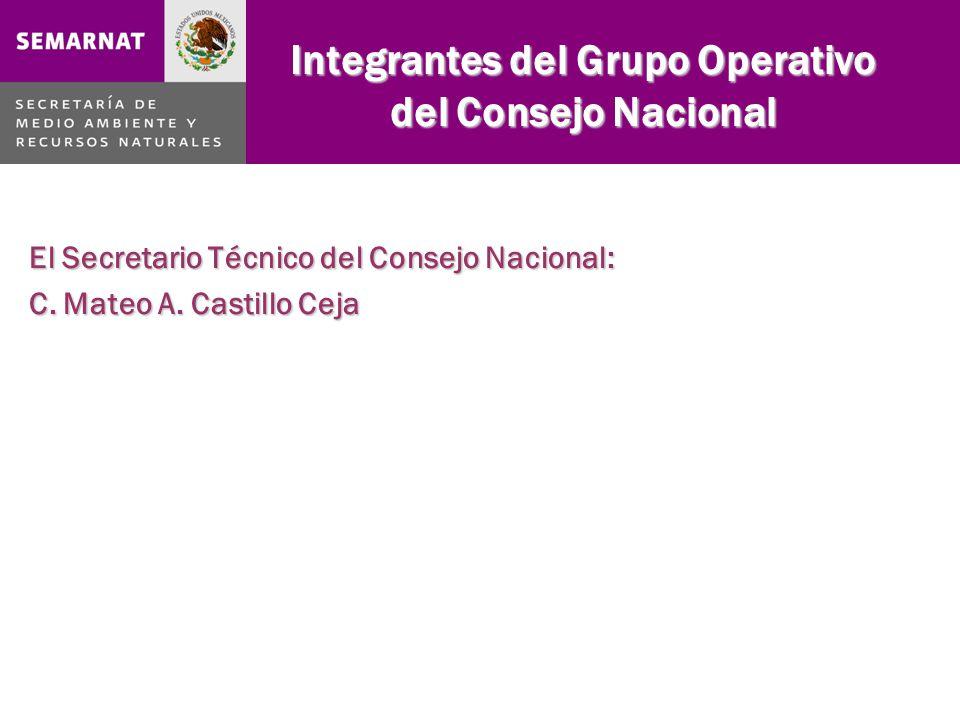 Integrantes del Grupo Operativo del Consejo Nacional El Secretario Técnico del Consejo Nacional: C.