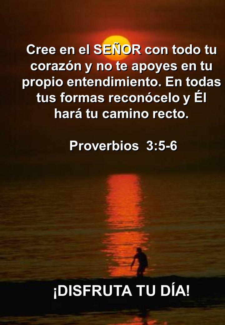 Que el Señor abra de par en par las ventanas del cielo y derrame sobre ti, una bendición para la cual no tengas el espacio suficiente, para poder reci