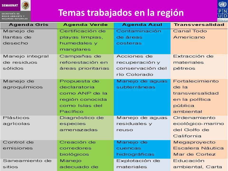 Temas trabajados en la región
