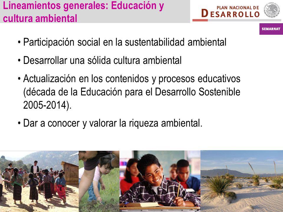 Lineamientos generales: Educación y cultura ambiental Participación social en la sustentabilidad ambiental Desarrollar una sólida cultura ambiental Actualización en los contenidos y procesos educativos (década de la Educación para el Desarrollo Sostenible 2005-2014).