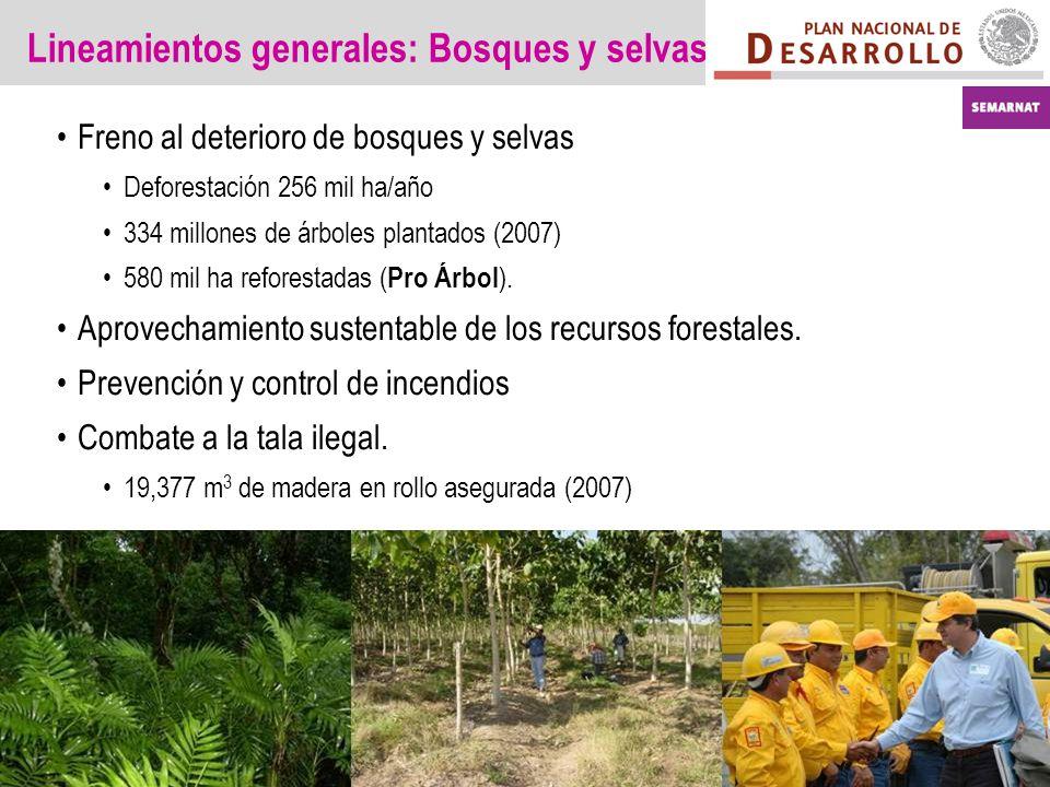 Lineamientos generales: Bosques y selvas Freno al deterioro de bosques y selvas Deforestación 256 mil ha/año 334 millones de árboles plantados (2007) 580 mil ha reforestadas ( Pro Árbol ).