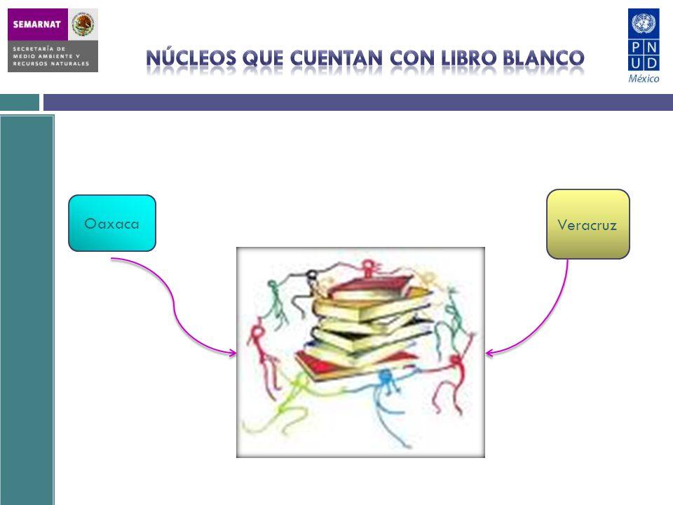 Contenido del Libro Blanco CCDS Región Sur