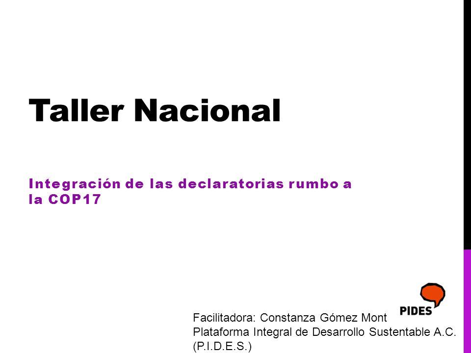Taller Nacional Integración de las declaratorias rumbo a la COP17 Facilitadora: Constanza Gómez Mont Plataforma Integral de Desarrollo Sustentable A.C