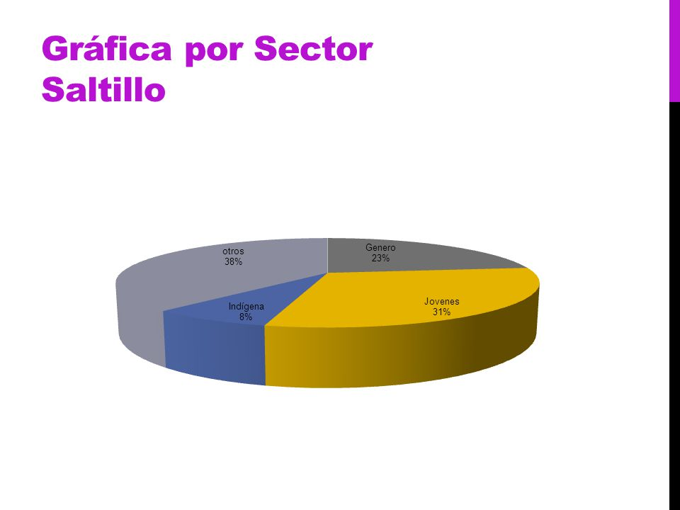 Gráfica por Sector Saltillo