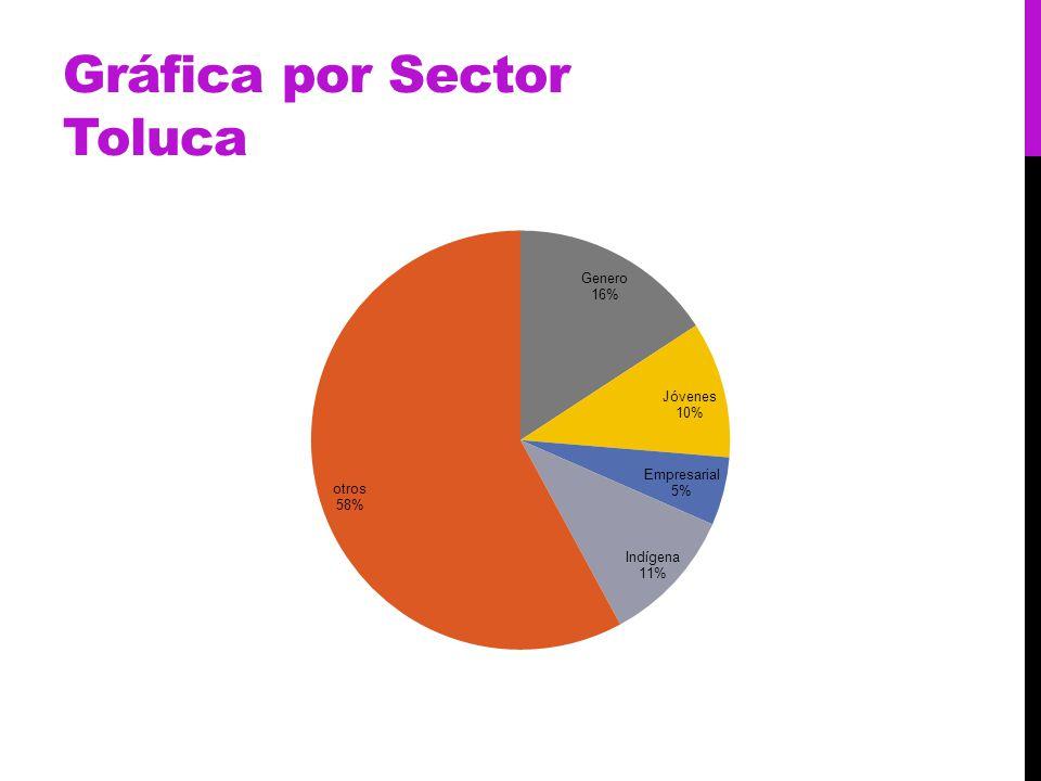 Gráfica por Sector Toluca