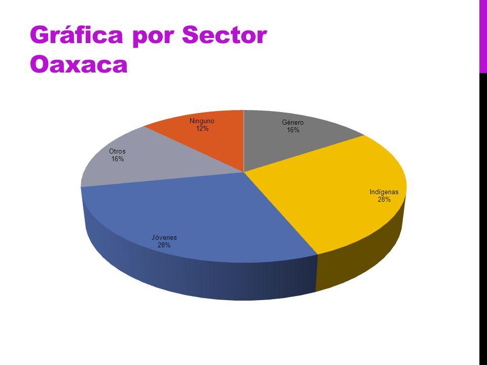 Gráfica por Sector Oaxaca