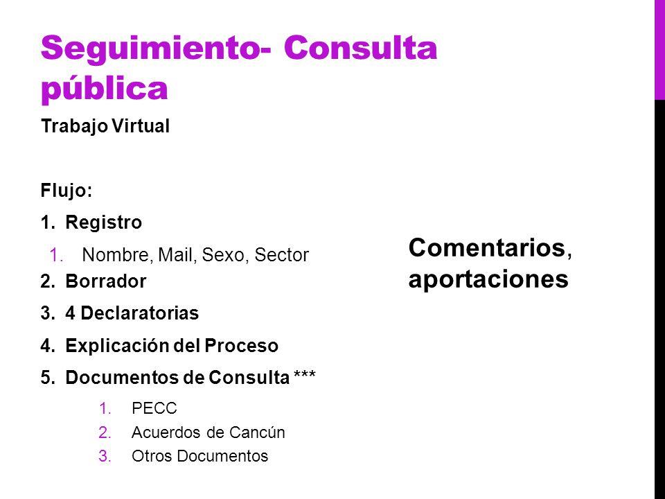 Seguimiento- Consulta pública Trabajo Virtual Flujo: 1.Registro 1.Nombre, Mail, Sexo, Sector 2.Borrador 3.4 Declaratorias 4.Explicación del Proceso 5.