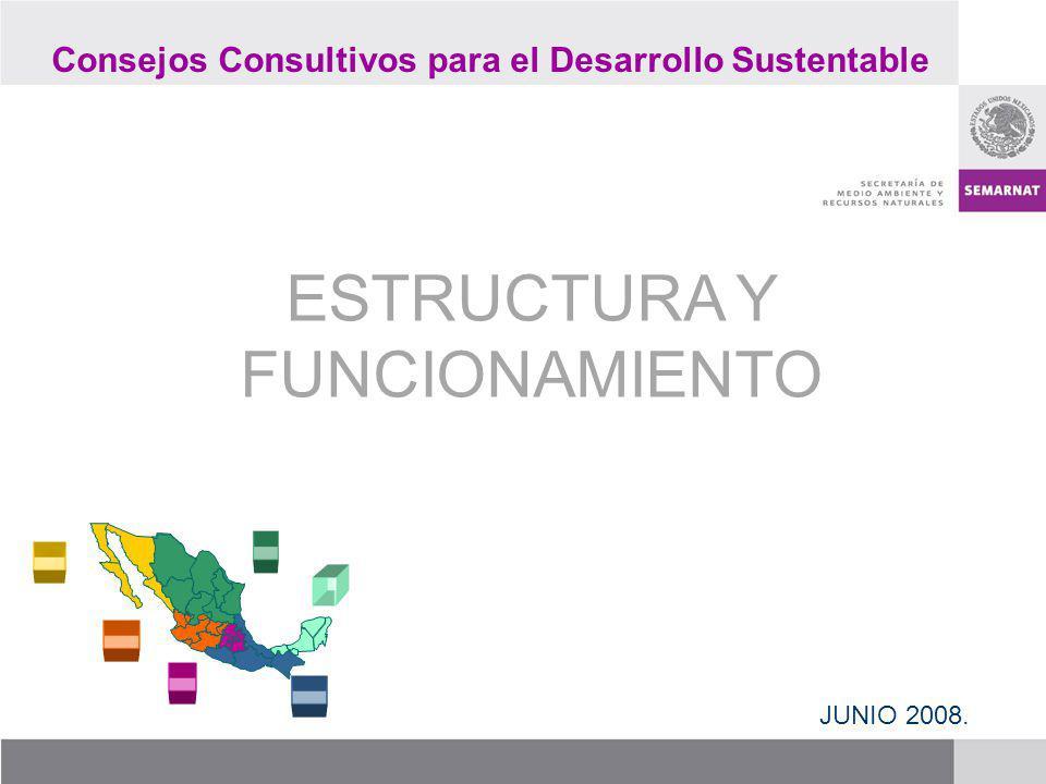 ESTRUCTURA Y FUNCIONAMIENTO JUNIO 2008. Consejos Consultivos para el Desarrollo Sustentable