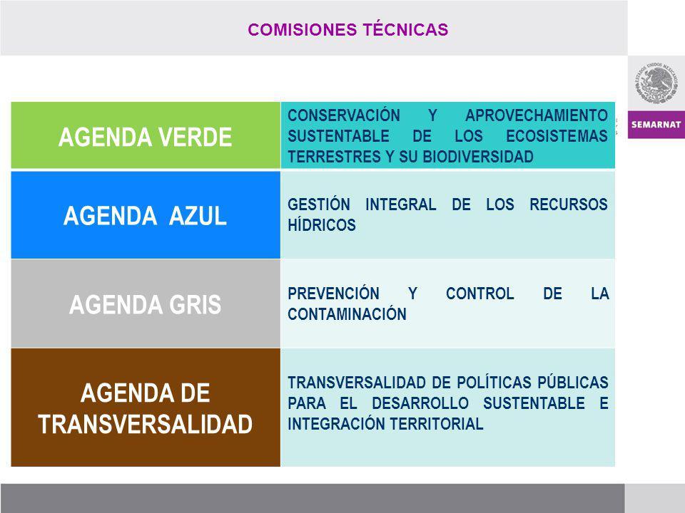 REPRESENTACIÓN DEL CCDS ANTE OTROS ORGANOS COMITÉ DE HUMEDALES PRIORITARIOS CONSEJO CONSULTIVO DE CAMBIO CLIMÁTICO ORDENAMIENTOS ECOLÓGICOS JUNTA AMBIENTAL DEL BUEN VECINO (GNEB) FRONTERA 2012 SINADES CITES CONSEJO NACIONAL FORESTAL (CONAF) CONSEJO NACIONAL DE ÁREAS NATURALES PROTEGIDAS (CONAP) CONSEJO NACIONAL DE EDUCACIÓN PARA LA SUSTENTABILIDAD CONSEJO CONSULTIVO DEL AGUA COMITÉ CONSULTIVO PÚBLICO CONJUNTO (CCPC)