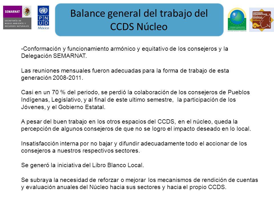 Balance general del trabajo del CCDS Núcleo -Conformación y funcionamiento armónico y equitativo de los consejeros y la Delegación SEMARNAT. Las reuni