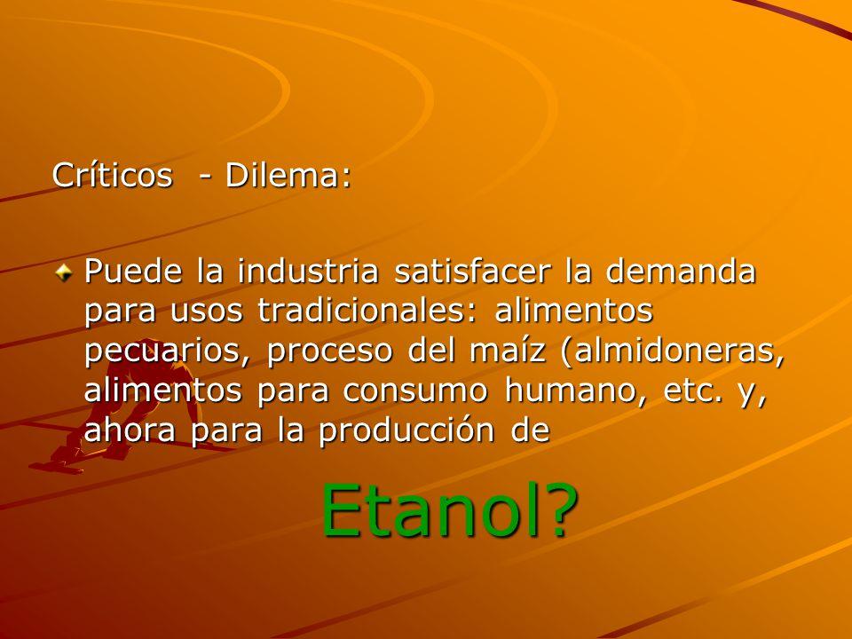 Críticos - Dilema: Puede la industria satisfacer la demanda para usos tradicionales: alimentos pecuarios, proceso del maíz (almidoneras, alimentos par