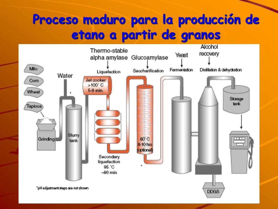 Proceso maduro para la producción de etano a partir de granos