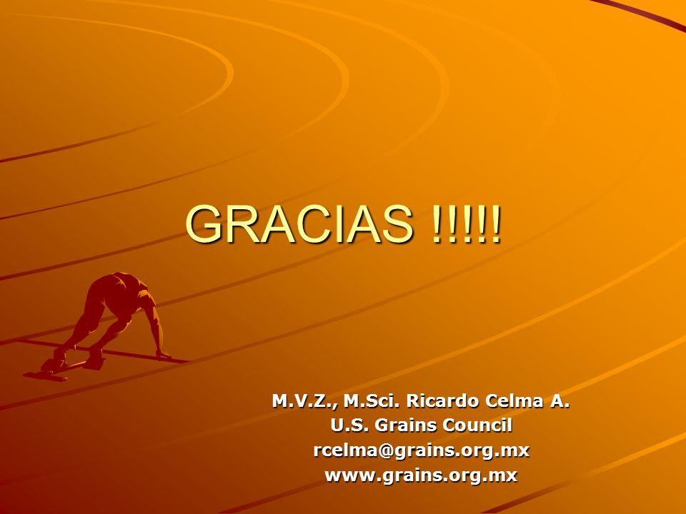 GRACIAS !!!!! M.V.Z., M.Sci. Ricardo Celma A. U.S. Grains Council rcelma@grains.org.mxwww.grains.org.mx