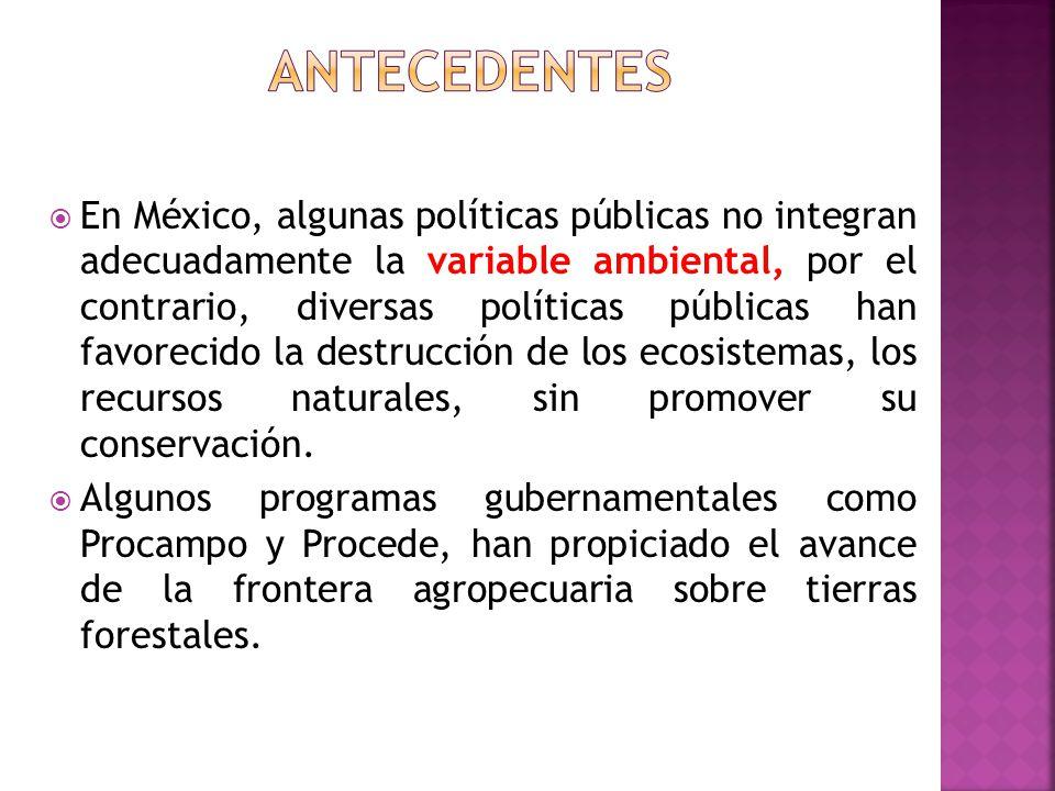En México, algunas políticas públicas no integran adecuadamente la variable ambiental, por el contrario, diversas políticas públicas han favorecido la
