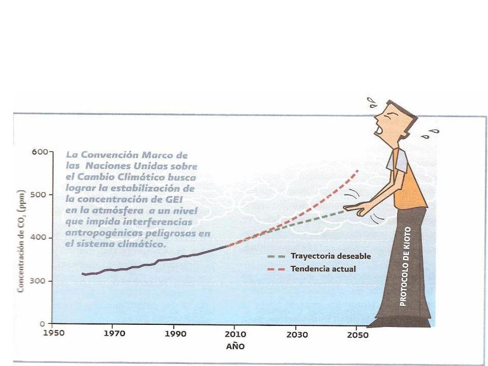 Consejo Consultivo del Cambio Climático Agenda de Transversalidad 2009 Actividades del C4 en que participó el Consejero de Puebla, región centro, como
