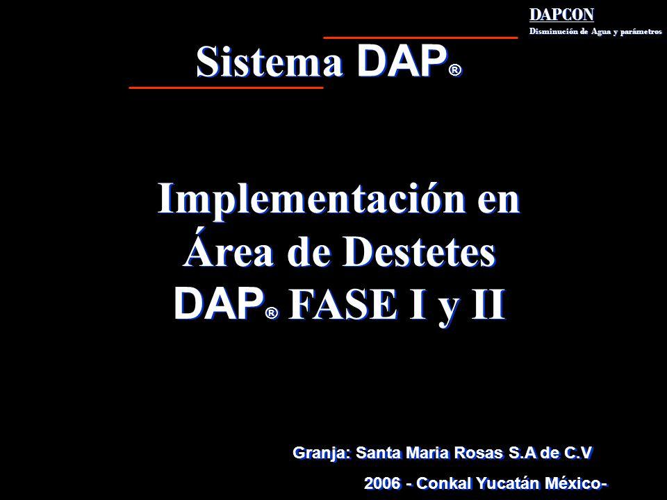Sistema DAP ® DAPCON Disminución de Agua y parámetros DAPCON Disminución de Agua y parámetros Implementación en Área de Destetes DAP ® FASE I y II Imp